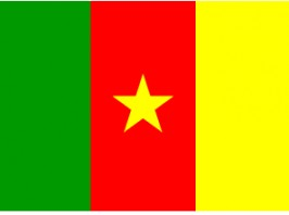 Ambassade du congo r publique yaound cameroun congo for Chambre de commerce du congo brazzaville