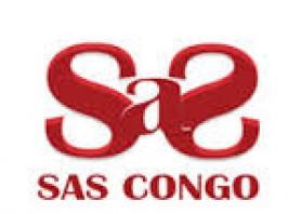 Societes de services congo info for Chambre de commerce du congo brazzaville
